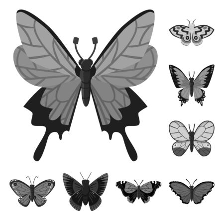 Vector design of fly and insect sign. Collection of fly and botanic stock vector illustration.