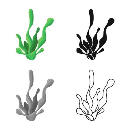 Vector illustration of seaweed and coral icon. Collection of seaweed and marine stock vector illustration.