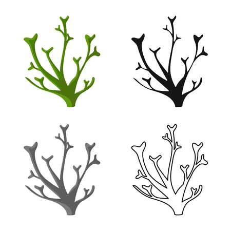 Vector illustration of seaweed and marine icon. Collection of seaweed and green stock symbol for web.