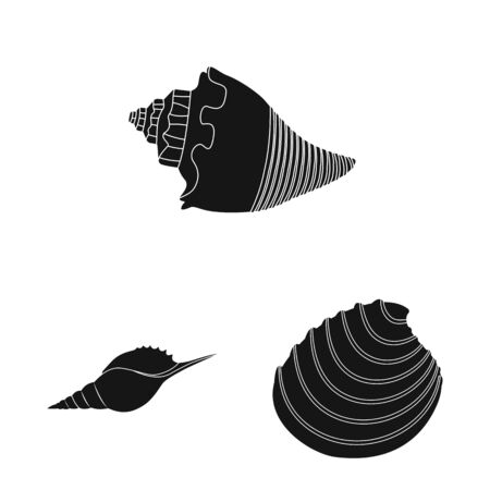 Vector illustration of nature and ocean icon. Collection of nature and mollusk stock symbol for web.