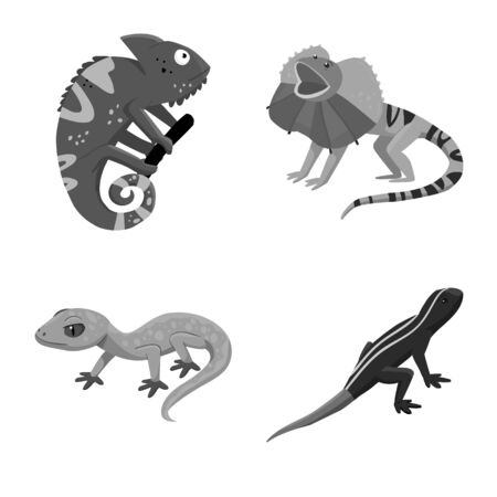 Vector design of wild and exotic icon. Collection of wild and fauna stock vector illustration.