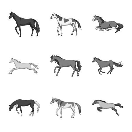 Isolated object of farm and riding logo. Set of farm and equestrian vector icon for stock.