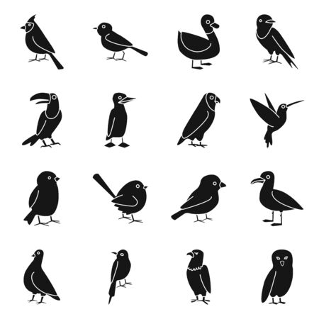 Isolated object of animal and wild symbol. Collection of animal and plumage stock vector illustration.