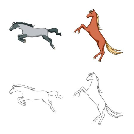 Vector illustration of breed and equestrian sign. Set of breed and mare vector icon for stock. Illustration