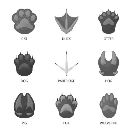 Isolated object of wildlife and trace symbol. Collection of wildlife and walk stock vector illustration.