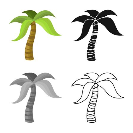 Isolated object of palm and forest logo. Collection of palm and hawaii stock symbol for web.