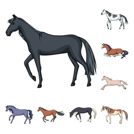 Isolated object of animal and stallion logo. Set of animal and farm vector icon for stock.