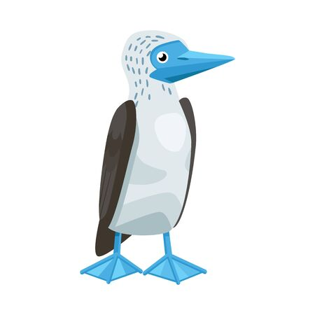 Vector illustration of bird and booby symbol. Set of bird and blue vector icon for stock. Stock Vector - 130362882