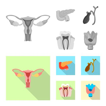 Vector design of body and human icon. Set of body and medical stock vector illustration.  イラスト・ベクター素材