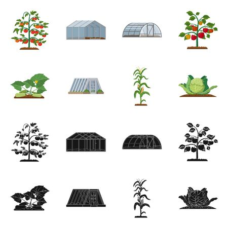 Vector design of greenhouse and plant sign. Set of greenhouse and garden stock vector illustration.