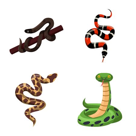 Vector design of snake and creepy sign. Collection of snake and danger vector icon for stock. Stock Illustratie