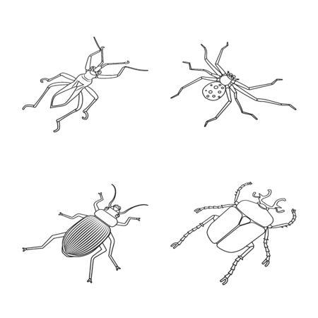 Vector design of fauna and entomology sign. Set of fauna and animal stock symbol for web.