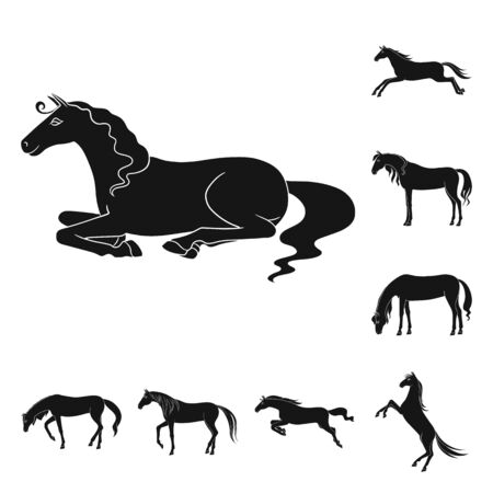 Isolated object of fauna and mare symbol. Set of fauna and stallion stock vector illustration.