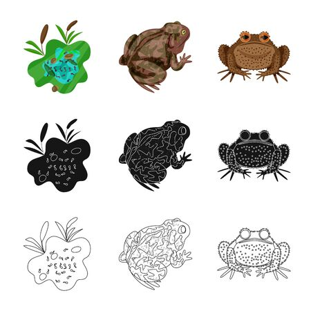 Vector design of wildlife and bog logo. Set of wildlife and reptile stock vector illustration.