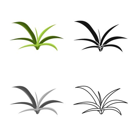 Vector illustration of bush and park icon. Collection of bush and green vector icon for stock. 向量圖像