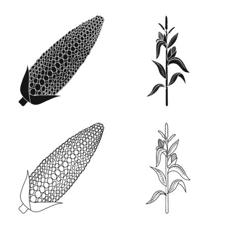 Isolated object of cornfield and vegetable symbol. Collection of cornfield and vegetarian vector icon for stock.