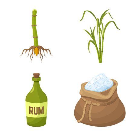 Vector design of sugarcane and plant symbol. Collection of sugarcane and organic stock symbol for web. Иллюстрация