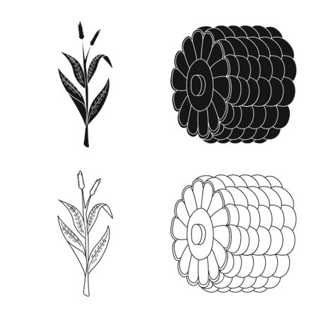 Vector design of cornfield and vegetable symbol. Collection of cornfield and vegetarian stock vector illustration. Ilustrace