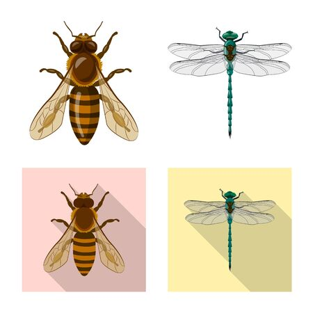 Vector illustration of insect and fly logo. Set of insect and element stock vector illustration.  イラスト・ベクター素材
