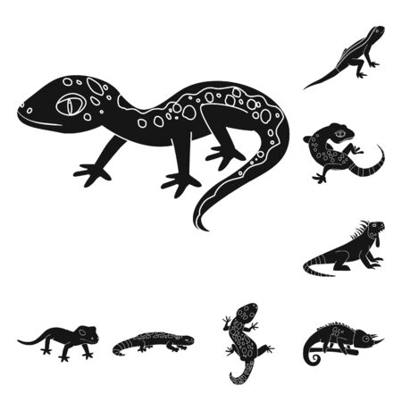 Isolated object of zoo and environment sign. Collection of zoo and reptile stock symbol for web. Stock Illustratie