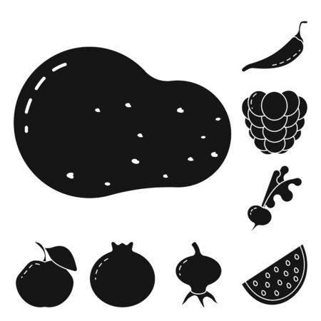 Vector illustration of vegetarian and organic icon. Collection of vegetarian and food stock vector illustration.