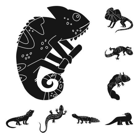 Isolated object of zoo and environment logo. Collection of zoo and reptile vector icon for stock.