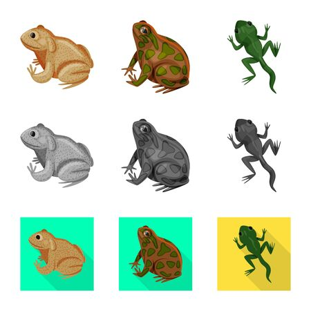 Vector design of wildlife and bog sign. Collection of wildlife and reptile stock symbol for web. Çizim