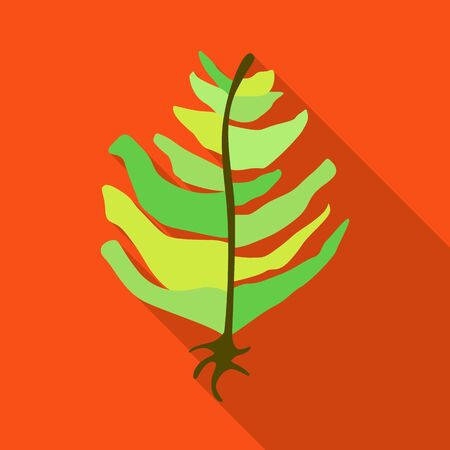 Vector design of seaweed and green  . Collection of seaweed and algae stock symbol for web.