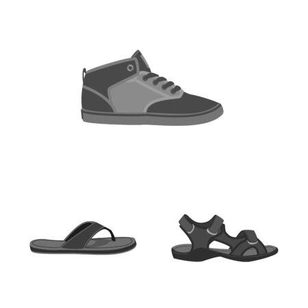 Vector illustration of shoe and footwear  . Set of shoe and foot stock vector illustration.