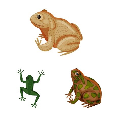 Vector design of frog and anuran  . Collection of frog and animal stock symbol for web.
