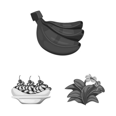 Vector design of fresh and diet sign. Set of fresh and vegetarian stock vector illustration. Illustration