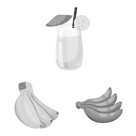 Vector illustration of fresh and diet  . Collection of fresh and vegetarian vector icon for stock.