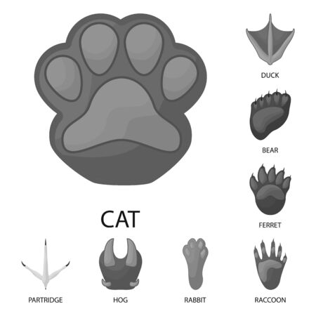 Isolated object of wildlife and trace symbol. Collection of wildlife and walk stock symbol for web. Illustration