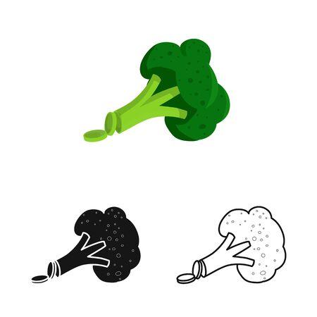 Objet isolé de brocoli et produit. Collection de brocoli et icône de vecteur de culture pour le stock.