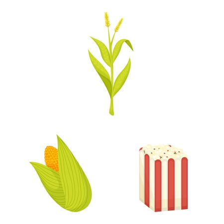Vector illustration of maize and food sign. Set of maize and crop stock vector illustration.