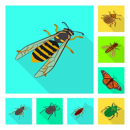 Vector design of nature and wildlife sign. Collection of nature and wing vector icon for stock. Ilustração