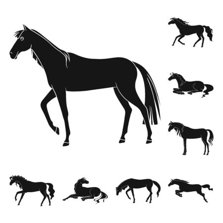 Isolated object of fauna and mare sign. Collection of fauna and stallion stock vector illustration.