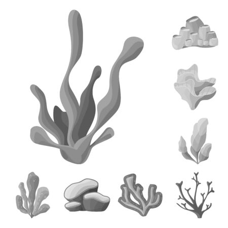 Vector design of botanical and flora sign. Set of botanical and nature vector icon for stock.