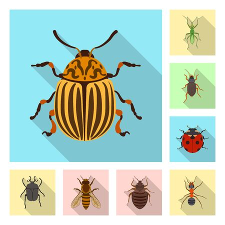Isolated object of insect and fly symbol. Collection of insect and element stock vector illustration. Ilustração