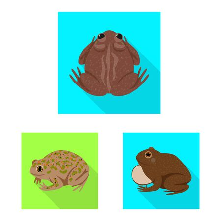 Vector illustration of wildlife and bog. Set of wildlife and reptile stock vector illustration.