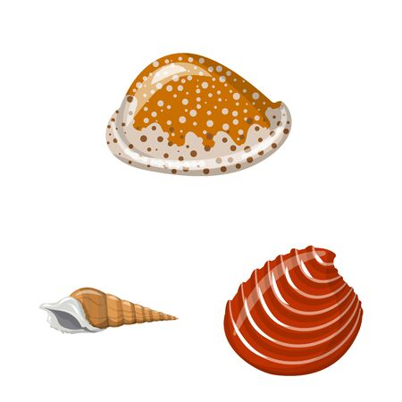 Isolated object of seashell and mollusk icon. Set of seashell and seafood stock vector illustration. Ilustração