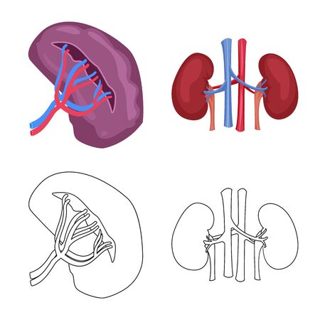 Vector illustration of body and human icon. Collection of body and medical stock vector illustration.