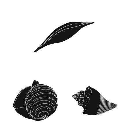 Vector design of nature and ocean icon. Set of nature and mollusk stock vector illustration. Ilustração
