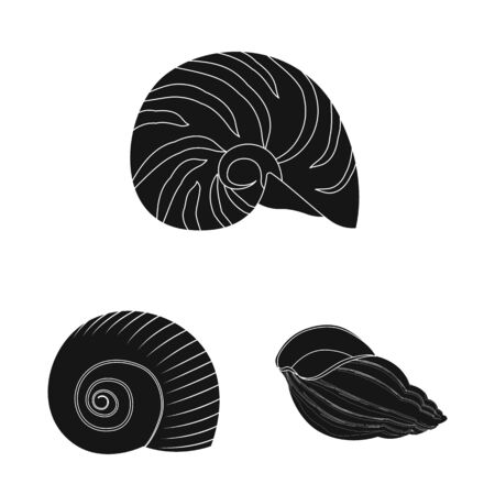 Isolated object of nature and ocean sign. Collection of nature and mollusk vector icon for stock.