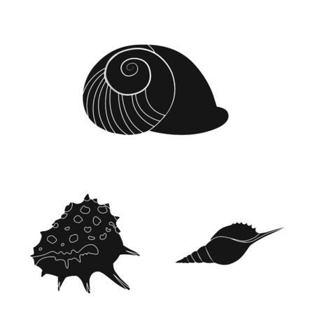 Isolated object of nature and ocean logo. Set of nature and mollusk stock symbol for web.