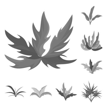 Vector illustration of foliage and floral sign. Set of foliage and summer stock vector illustration.