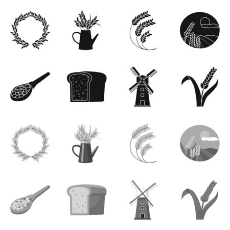 Vector design of grain and harvest symbol. Set of grain and agriculture stock vector illustration.  イラスト・ベクター素材