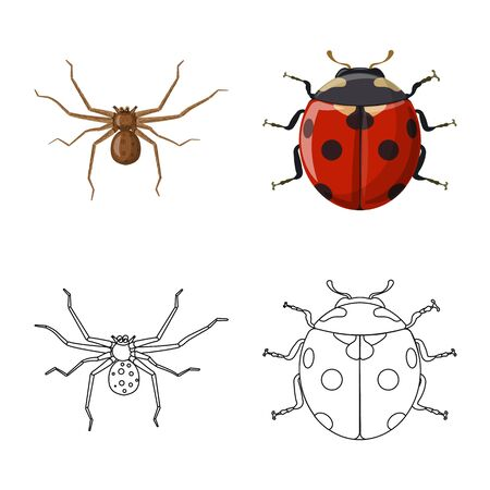 Isolated object of insect and fly logo. Collection of insect and element stock symbol for web.