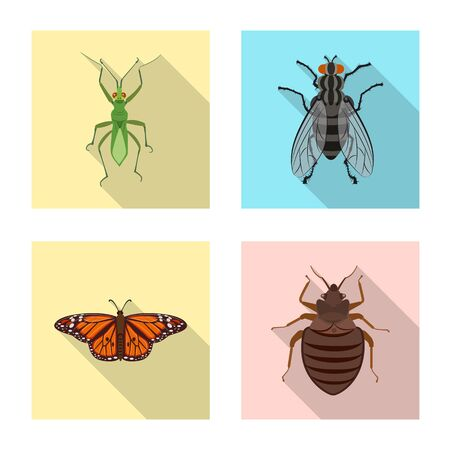 Vector design of insect and fly symbol. Collection of insect and element stock vector illustration.