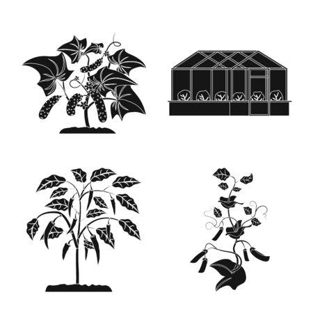 Vector illustration of greenhouse and plant icon. Set of greenhouse and garden stock vector illustration. Ilustração